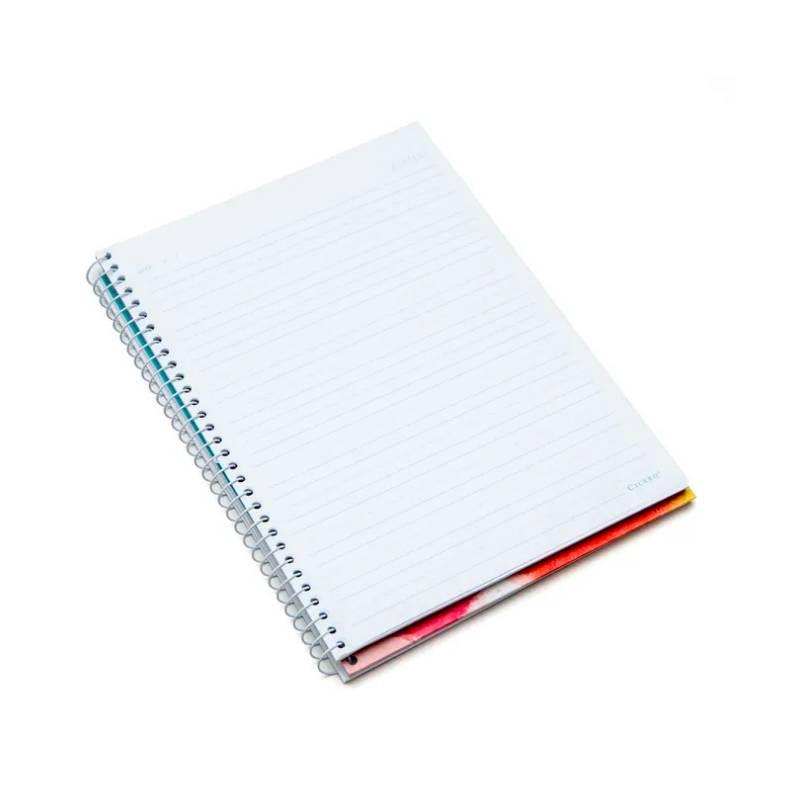 Caderno CÍCERO Universitário