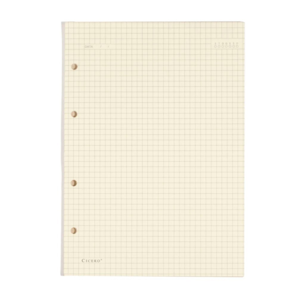 Refil Pólen CICERO Caderno Criativo Argolado 40 Fls