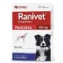 Antiácido coveli ranivet ranitidina para cães com 12 comprimidos