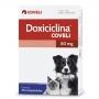 Antibiótico doxiciclina 80mg para cães e gatos com 20 comprimidos
