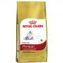 Ração royal canin gato adulto persian
