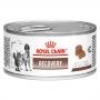 Ração royal canin lata cães e gatos recovery 195g