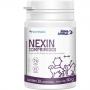 Suplemento alimentar mundo animal nutrisana nexin comprimidos para cães e gatos com 30 comprimidos