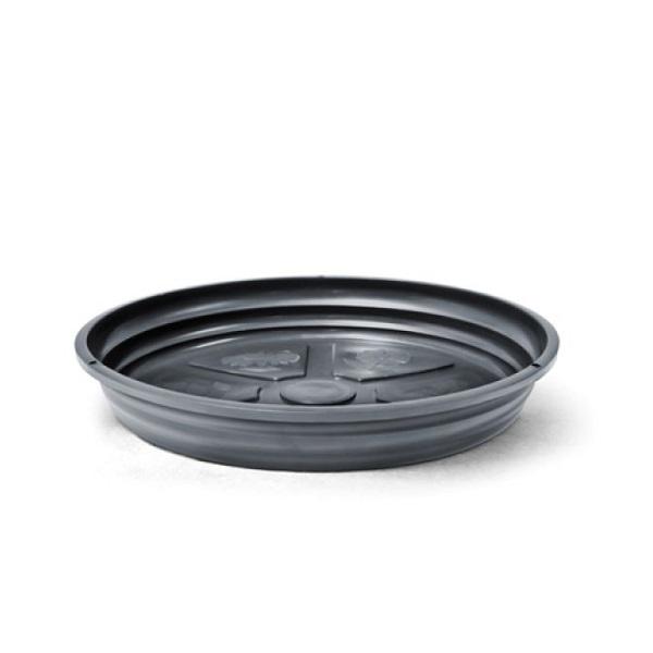 Prato tamanho violeta preto Vitaplan