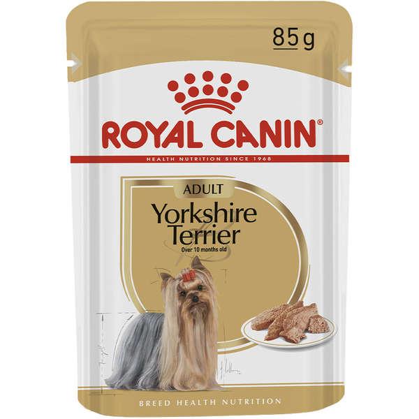 Ração Royal Canin Sachê Breed Health Nutrition Adult Wet para Yorkshire Terrier 85 g