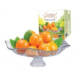 Saladeira e Fruteira de Vidro Gourmet com Pé 32 Cm