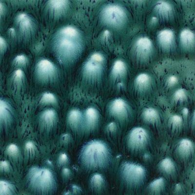 CG974 - BLOOMIN BLUE