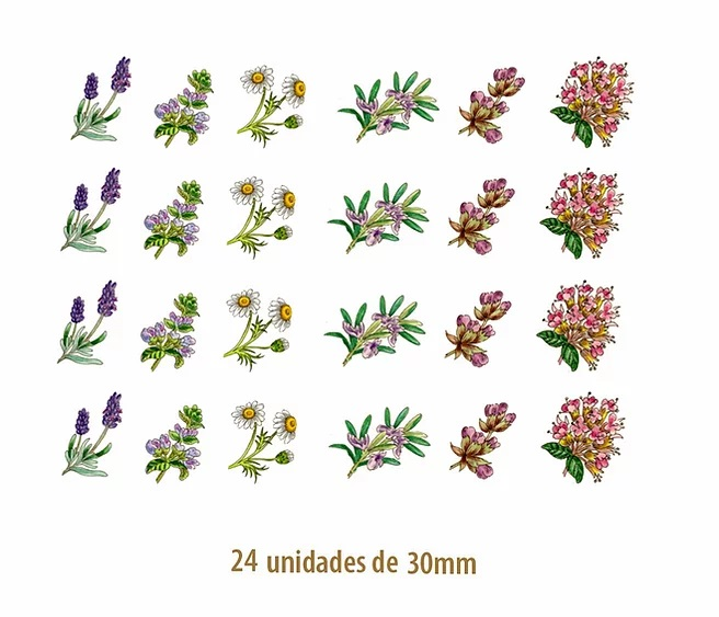 DECALQUE COLOR HERBS - 30mm