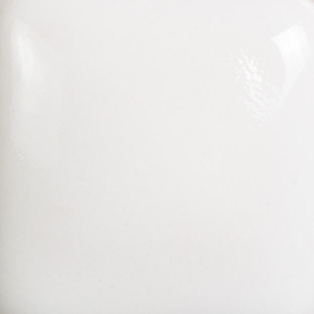 FN001 - WHITE