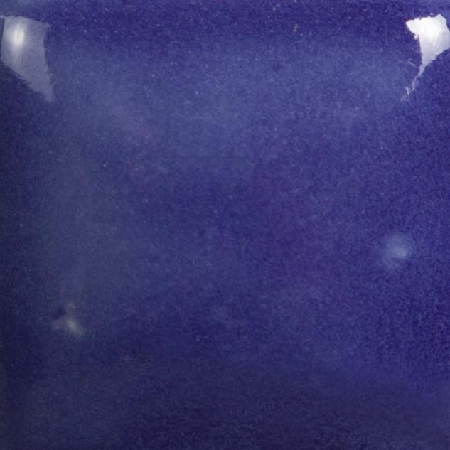 FN017 - PURPLE