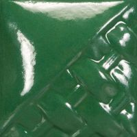 SW509 - DARK GREEN GLOSS