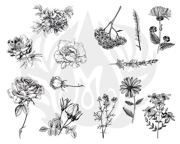 TELA PARA SILKSCREEN - MOTIVO: FLOWERS