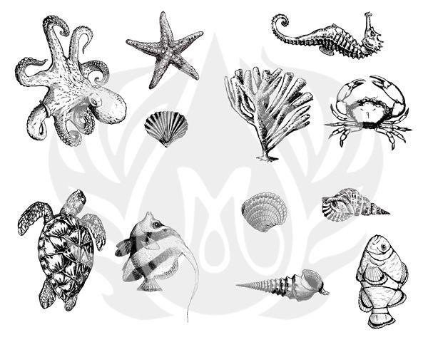 TELA PARA SILKSCREEN - MOTIVO: SEA LIFE