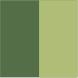 Verde/Musgo