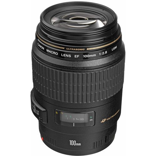 Lente Canon USM Macro EF 100mm f/2.8