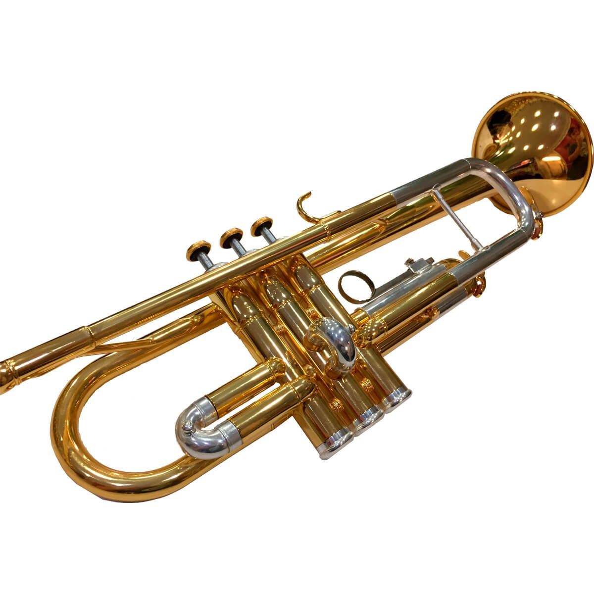 Reforma Geral De Trompete, Tuba, Bombardão, Trombone, Bombardino, Trompa, Flugelhorn E Cornet