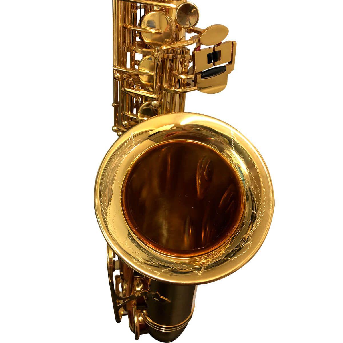 Sax Alto - Dourado - Profissional - Pas-761 - Premier