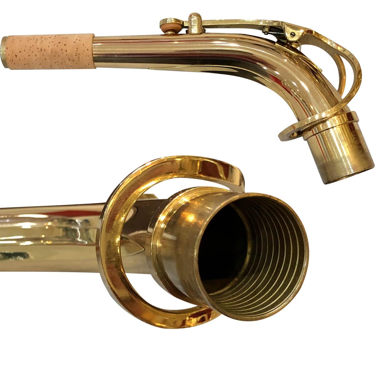 Sax Alto - Dourado - Profissional - Pas-861 - Premier