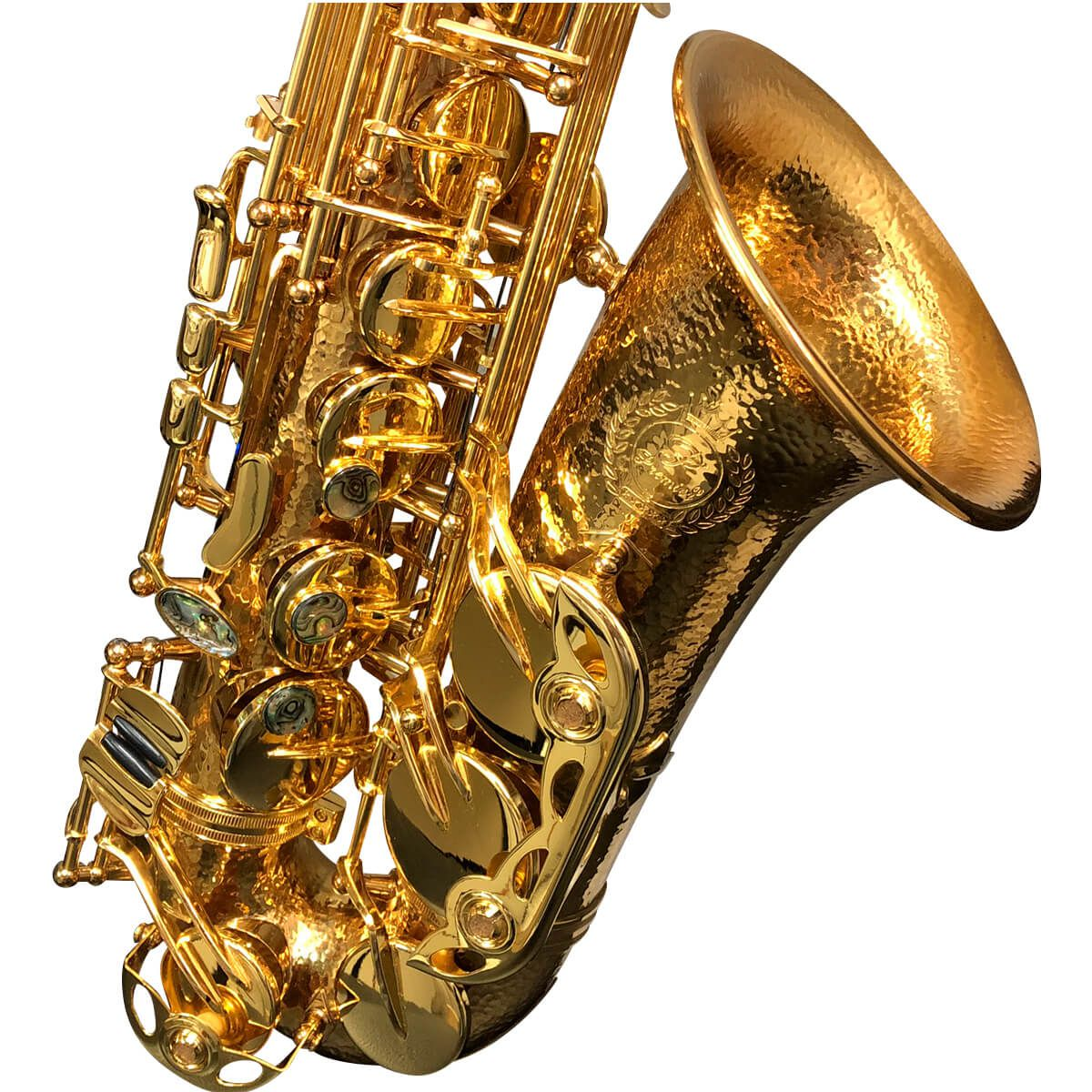 Sax Alto - Dourado - Profissional - Pas-961 - Premier