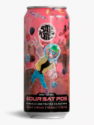 Cerveja SourSat P.05 Satélite 473ml