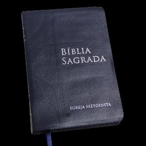 Bíblia Com Cruz E Chama -