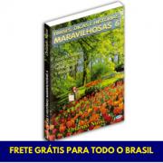 Frases, Dicas e Histórias Maravilhosas - Vol. 06 - FRETE GRÁTIS