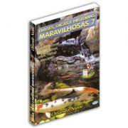 Frases, Dicas e Histórias Maravilhosas - Volume 07