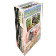 Mini Coleção Frases Dicas e Histórias Maravilhosas com os livros Kit II