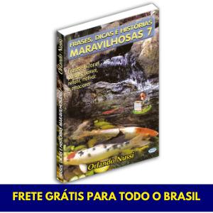 Frases, Dicas e Histórias Maravilhosas - Vol.07 - FRETE GRÁTIS