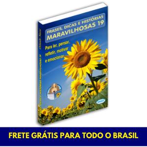 LANÇAMENTO 2020 - Frases, Dicas e Histórias Maravilhosas - Vol. 19 - FRETE GRÁTIS