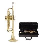 Trompete Vogga VSTR701N Bb Niquelado C/Case