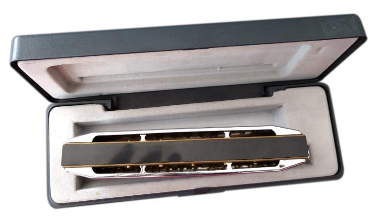 Gaita Stagg Slide Cromática BJH C48   - MegaLojaSP