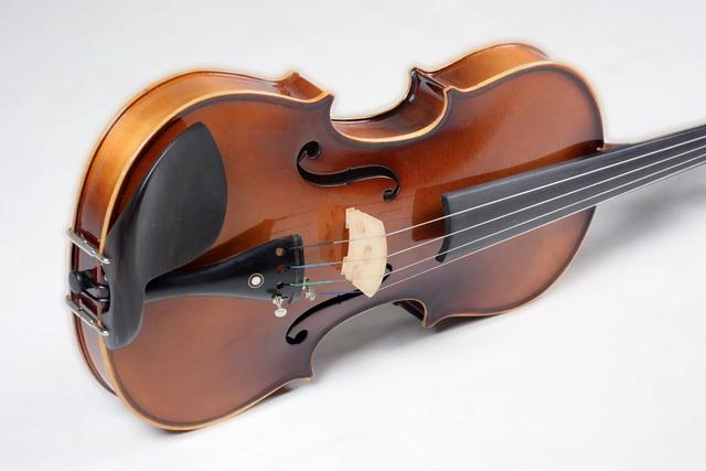Violino Vivace Beethoven 3/4 Verniz BE34  - MegaLojaSP