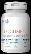 Cogumelo Agaricus 12 - PURIS