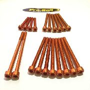 Kit Universal de Parafusos das Tampas do Motor Alumínio Pro-Bolt 20 pçs Laranja