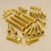 Kit 41 Parafusos Allen de Aluminio Socket M6 x 16mm Dourado