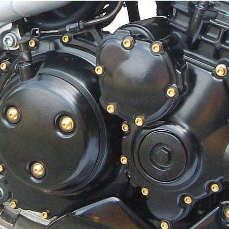 Parafusos da tampa do motor Honda CBR1000RR 06-07 Dourado