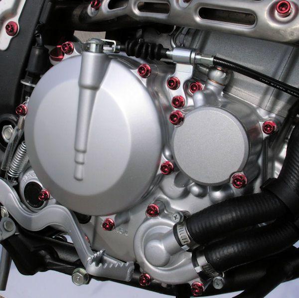 Parafusos da tampa do motor Kawasaki Ninja 250R 08+ Vermelho