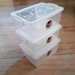 Caixa Organizadora Plástica com Tampa 4 lt com 3 un