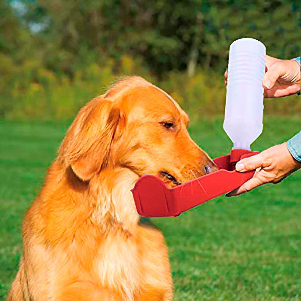 Bebedouro Portátil para Cães 500ml