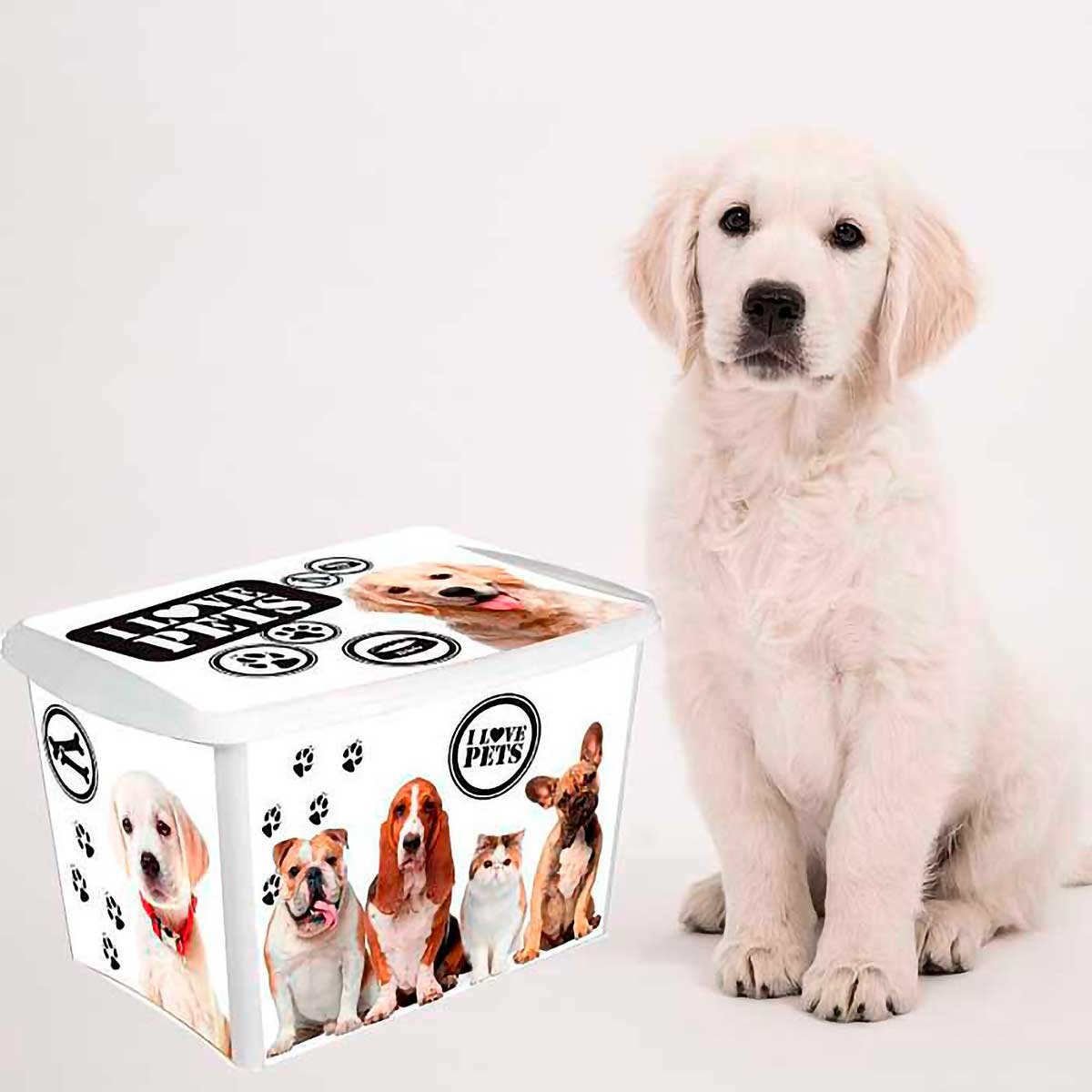 Caixa Organizadora Alta para Pet 18,7 L