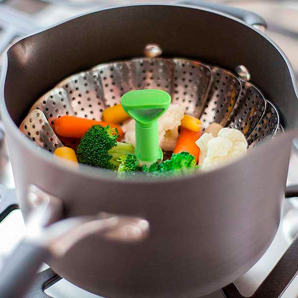 Cozedor de Legumes a Vapor de Inox