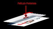 Película Protetora para Crachá 100% Transparente 50 Unidades