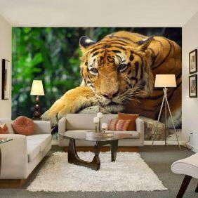 Painel Adesivo Fotográfico Animais 7,2m² M4