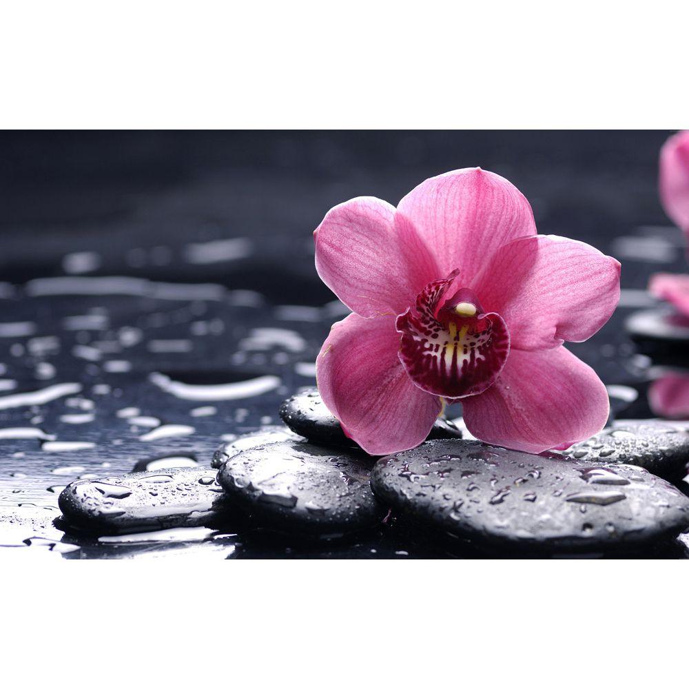 Painel Adesivo Fotográfico Floral Flores 7,2m² M4