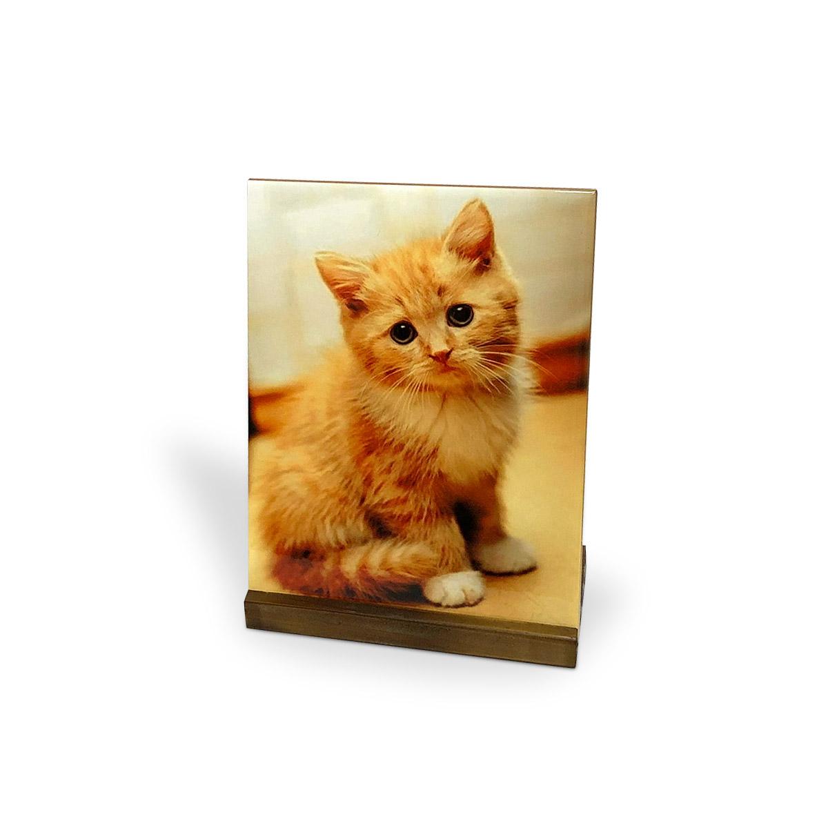 Azulejo Decorativo Gato Cat Love 20x15