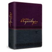 Bíblia de Estudo Arqueológica NVI - Vinho e Cinza
