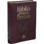 Bíblia do Pregador Pentecostal
