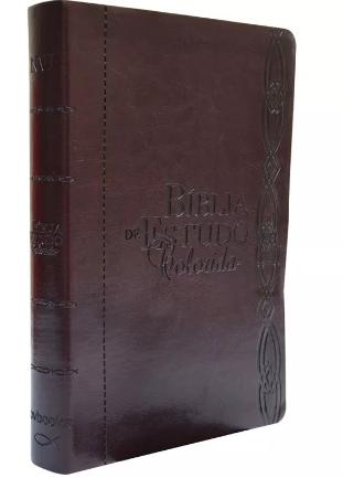 Bíblia de Estudo Colorida NVI