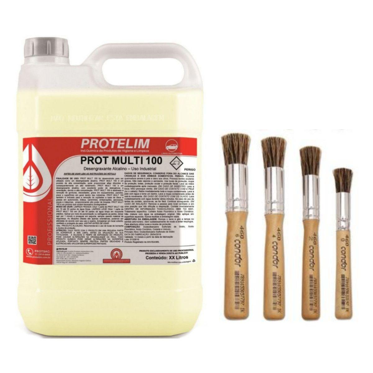 Prot Mult 100 Protelim + Kit De Pinceis Detailer